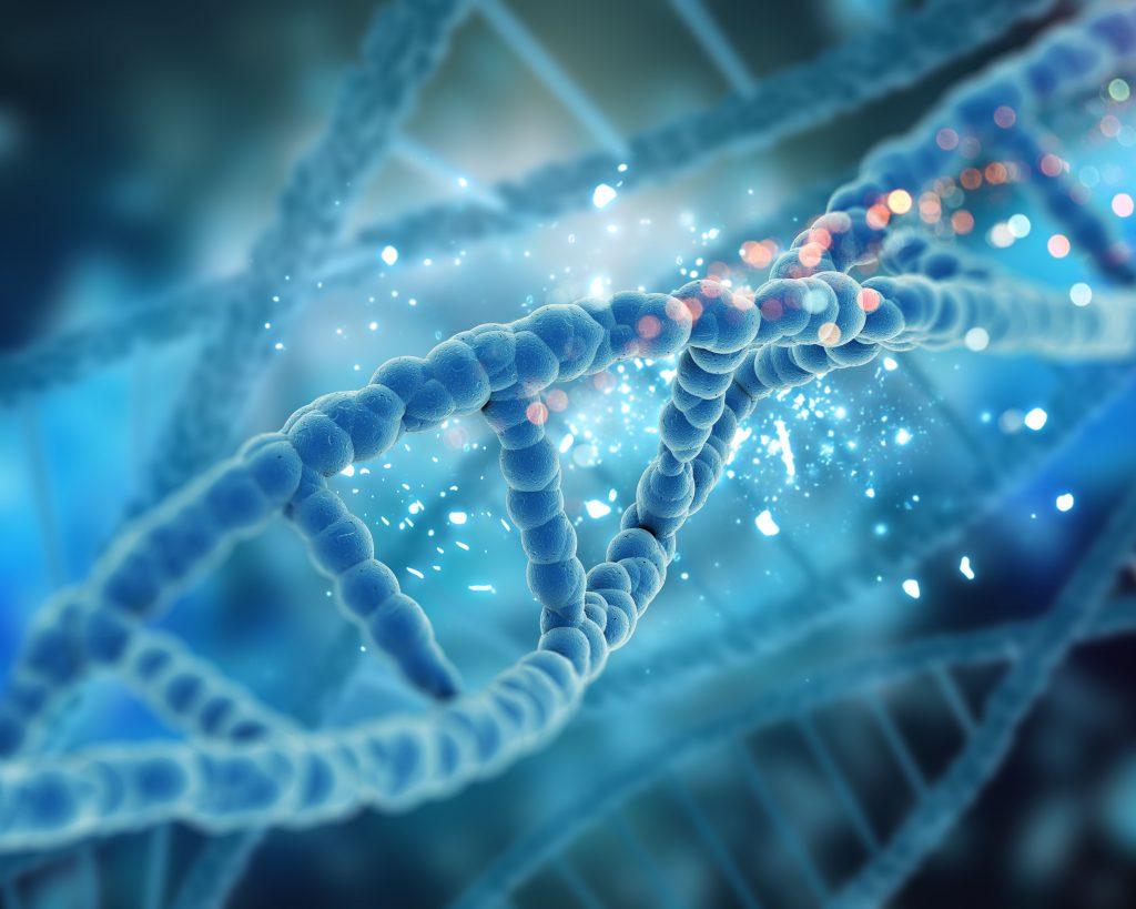 DNS - Sejtregenerálódás